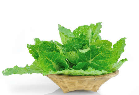 vibrat color: Lettuce in a basket