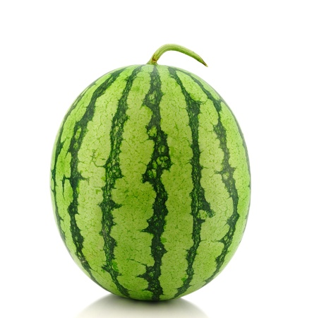 water melon  photo