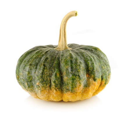 green pumpkin Stock Photo - 12567257