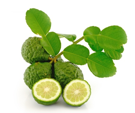Kaffir Lime with leaves  photo