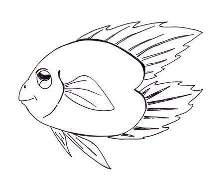 lowbrow: cartoon fish