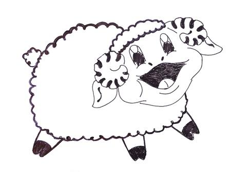 Smiling sheep cartoon  photo