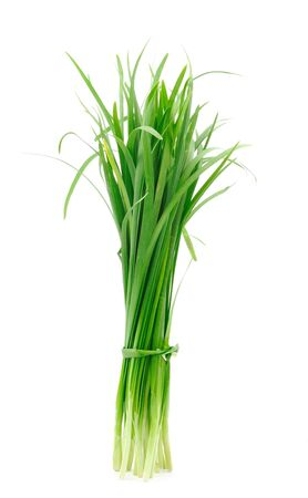 chives: Leek on white background