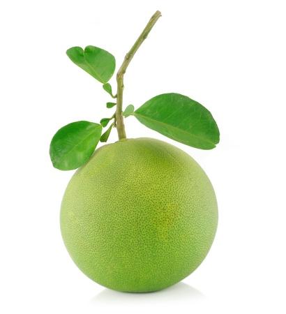 pomelo:  pomelo  fruit on white Backgorund