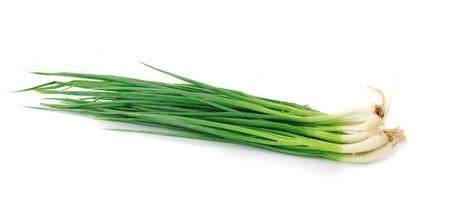 cebolla blanca: Cebolla verde sobre fondo blanco Foto de archivo