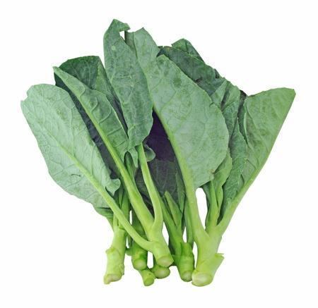 Chinese kale vegetable Stock Photo