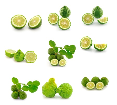 Kaffir Lime  on white background photo