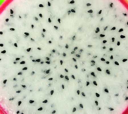 Close up of Dragon fruit photo