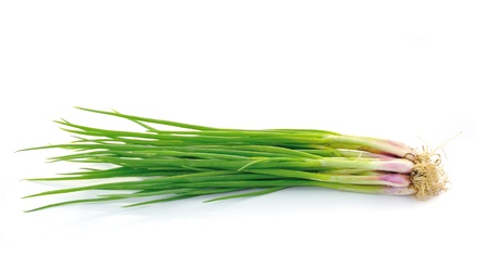 beautiful spring onions on a white background.