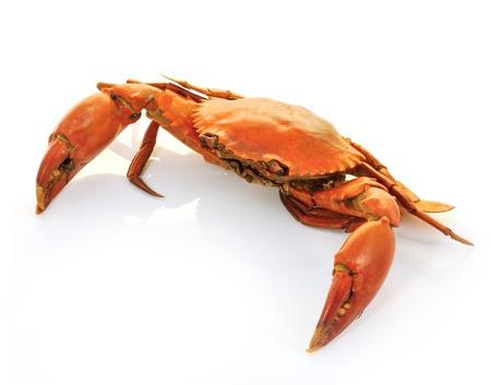 crab meat: crab