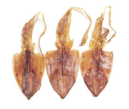 Squid drying on white background photo