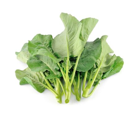 Chinese kale vegetable Stock Photo - 17439924