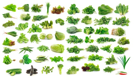chinese spinach: Vegetables collection isolated on white background