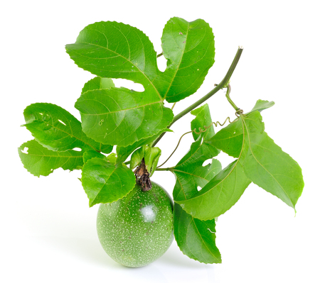 passionfruit on white background with leaves. photo