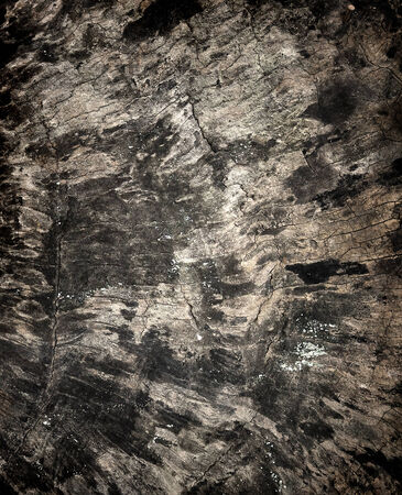 black wood texture: old black wood texture (for background)