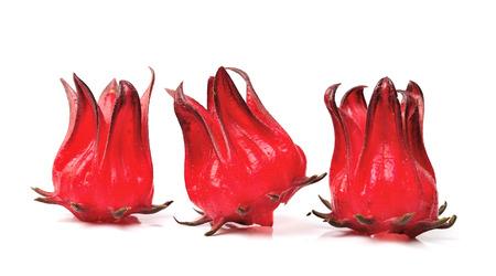 Hibiscus sabdariffa or roselle fruits Stock Photo
