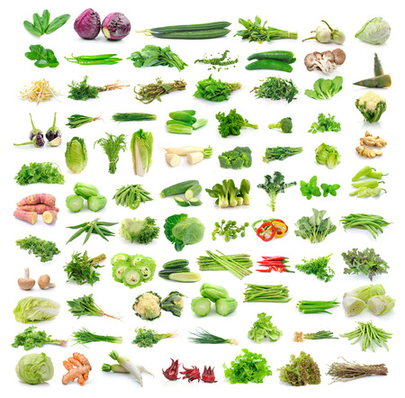 Cilantro, red cabbage, zucchini, eggplant, bell peppers, kaffir lime leaves, pepper, cucumber, mushrooms, bamboo shoots, bean sprouts, kale, cauliflower, cucumbers, morning glory leaves, garlic, broccoli, celery, squash, beans, okra, ginger, sweet potato, photo