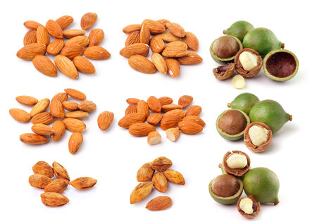 almond and macadamia nuts isolated on white background photo