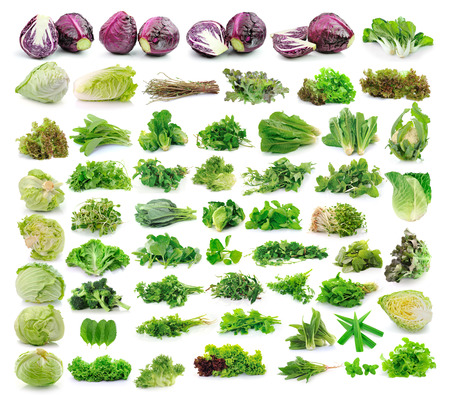 Vegetables collection isolated on white background photo