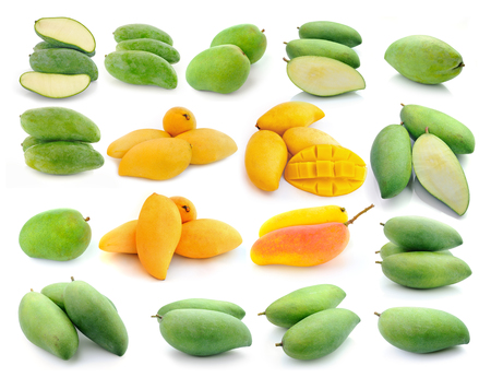 mango collection isolated on a white background photo