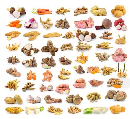 galangal: Yams, potatoes, ginger, galangal, turmeric, cinnamon, garlic, radish, carrot, taro , beetroot, shallots, isolated on white background
