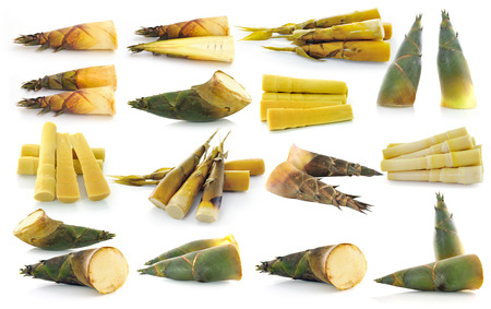 bamboo shoot isolated on white background  photo