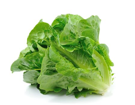 cos: Lettuce isolated on white background