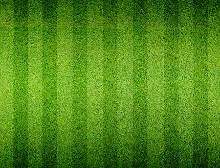 campo di calcio: Calcio campo di calcio in erba