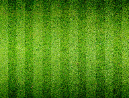 Campo de fútbol de hierba de fútbol Foto de archivo