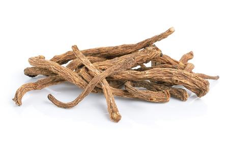 angelica sinensis herb on white background photo