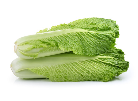 fresh chinese cabbage on a white background photo