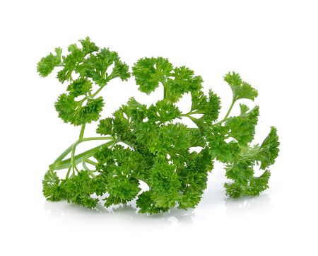 green leaves of parsley isolated on white background photo