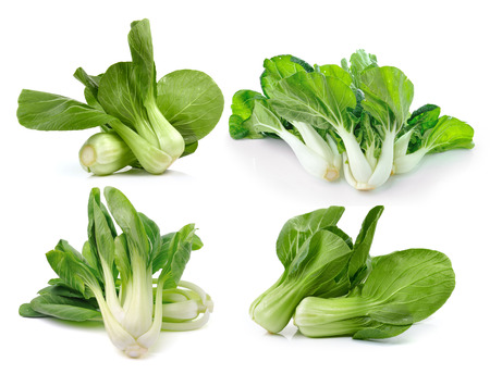 Bok choy (chinese cabbage or Qing geng cai) isolated on white background photo