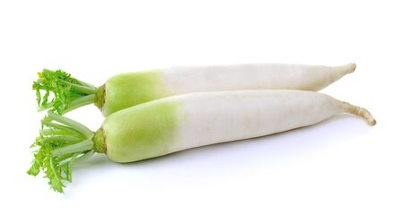 fresh white radish on a  white background photo