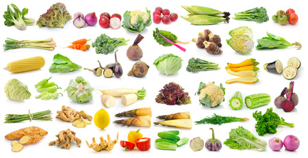 set of vegetable on white background photo
