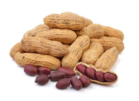 peanut isolated on a white background photo