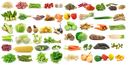 set of vegetable on white background photo