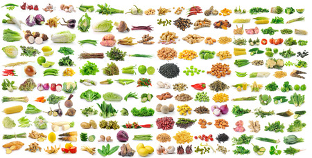 set of vegetable grains and herbs on white background photo