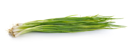 green onion: Green onion isolated on the white background
