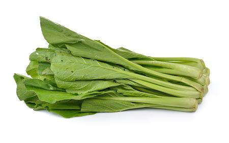 nontoxic: Chinese mustard green on white background (Nontoxic)
