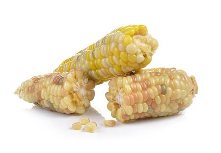waxy: waxy corn on white background Stock Photo
