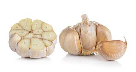 garlic: ajo en fondo blanco  Foto de archivo