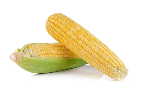 fresh corns on white background