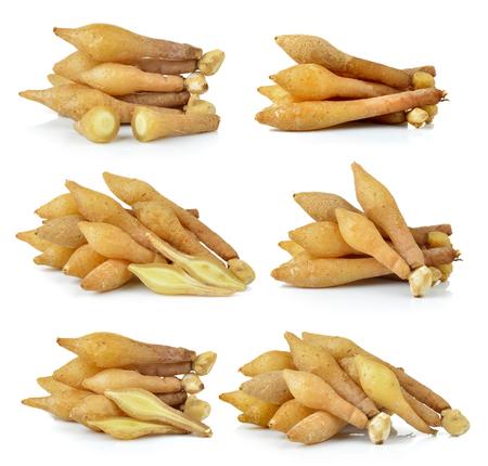 ginseng roots: Fingerroot, Kaempfer, Boesenbergia on white background