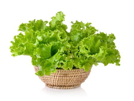 Fresh green lettuce in the basket isolated on a white background