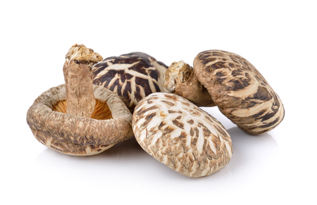 champignon shiitake Banque d'images