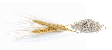wheat grain: barley ear over a white background