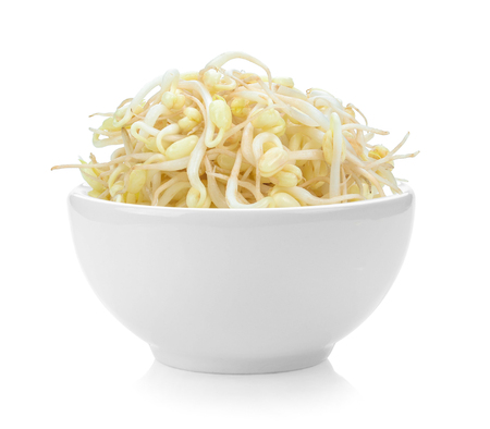 Bean Sprouts in white bowl on white background Reklamní fotografie