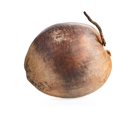 Dry coconut isolated on white background