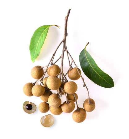 longan sweet fruit on white background